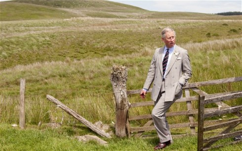 prince-of-wales-co_2623302b[1]